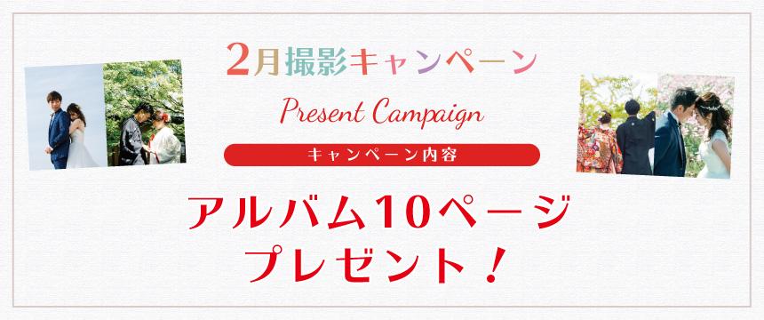 1月、2月撮影キャンペーン!アルバム中面10ページプレゼント!
