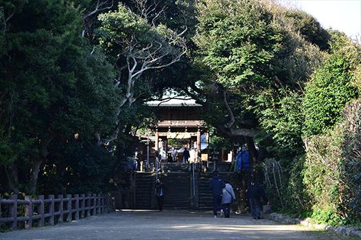 志賀海神社|住吉神社・護国神社など神社結婚式に人気の神社|福岡・九州で和装の神社結婚式・和婚ならウェディングセレクト!和婚