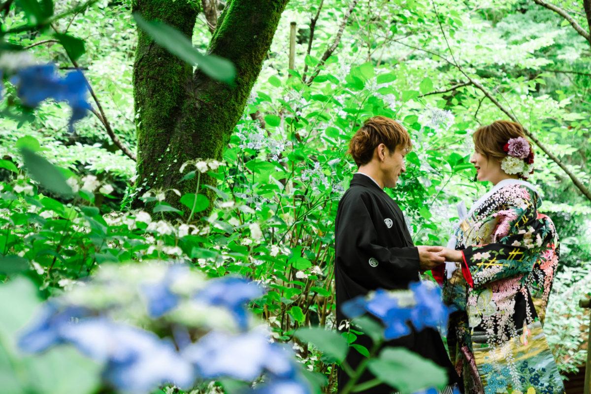 撮影日限定プランキャンペーン|フォトウェディング・前撮りのお得なキャンペーン|福岡・九州でフォトウェディング・前撮りならウェディングセレクト!フォトウェディング