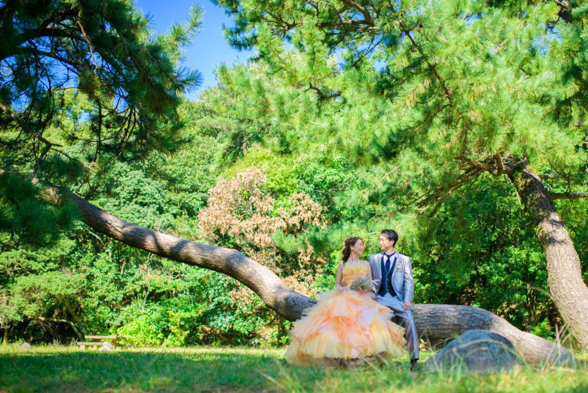 大濠日本庭園~小戸公園|ウェディングドレス・カラードレスの格安レンタル|福岡・九州で和装の神社結婚式・和婚ならウェディングセレクト!和婚