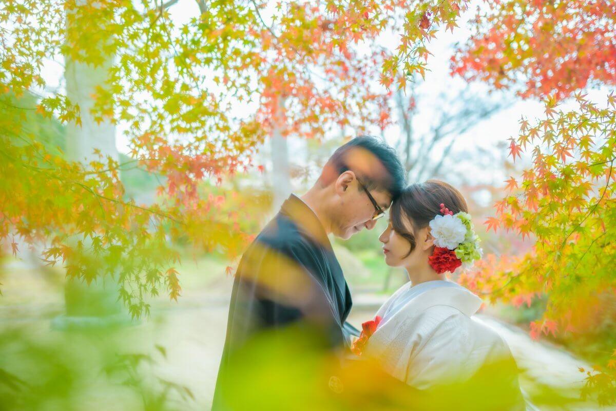 竈門神社~糸島|色打掛・白無垢の格安レンタル|福岡・九州で和装の神社結婚式・和婚ならウェディングセレクト!和婚